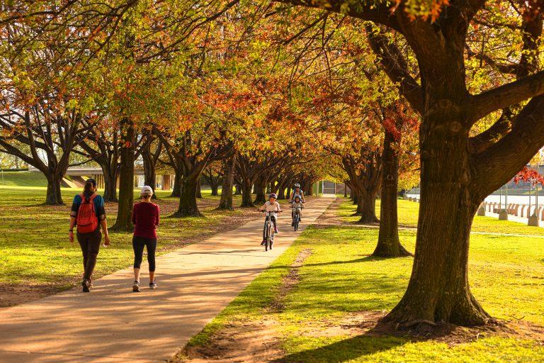 Autumn walks blog